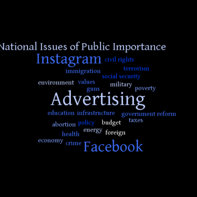 National Issues of Public Importance word cloud